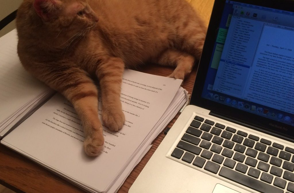 Cat Editors